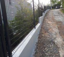 Mur de clôture en escalier car nous avions un dénivellé de 3m50 sur une longueur de 50 ml