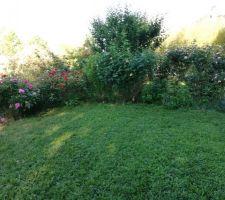 Le jardin, A+7