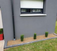 Création d'un parterre à l'est de la partie toit terrasse.  Bordure posée, Tapis végétal restant enlevé, Plantes plantées