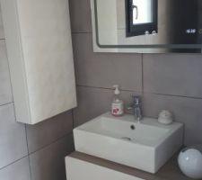Fin coin lavabo de la SDE parentale