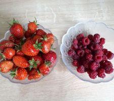 Petits fruits du jardin