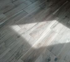 Carrelage de l'étage : Iguane brun de la marque Arte One