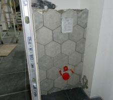 Faïences wc