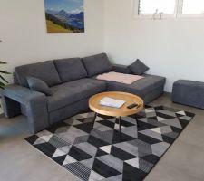 Nouveau canapé et nouveau tapis (merci renard !)