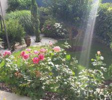Le jardin en fleur...