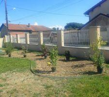 Disposition des arbustes avant plantation
