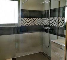 Photos et idées déco salle de bain - salle d\'eau (8359 photos)