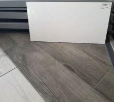 Faïence blanche 30x60 + sol imitation parquet bois grisé pour la salle d'eau du RDC