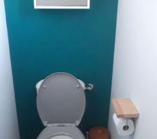 Les toilettes du rdc sont terminées et quand on aime la déco c'est jusque dans les toilettes ! Après tout on y passe en tout 3 ans dans sa vie !