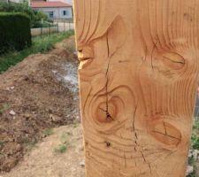 Gros plan poteau, défauts du bois