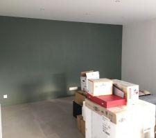 Mur salon vert kaki / vert forêt