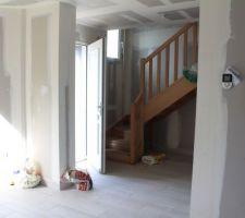 - Visite de pré-réception -  Entrée salon et escalier