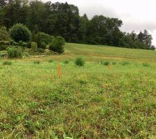 Implantation sur le terrain  RDV préparatoire terrassement Vue Sud Ouest