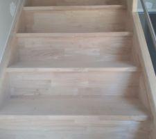 Escalier pin exotique