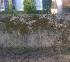 Le mur très abimé sur le lot 4
