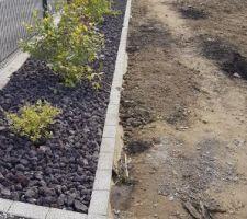 Plantation des massifs le long de la clôture, composés de différents type de plantes, graminées, liquidambar, lavande, bambou, arbre papillon...