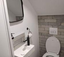 Tadam. Toilette du bas terminé. WC et lavabo raccordé à la cuve de récupération d'eau :)