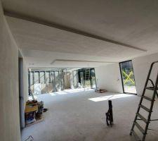 Faux plafonds du séjour