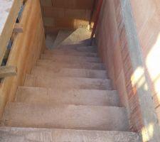 Escalier rdc-1er étage