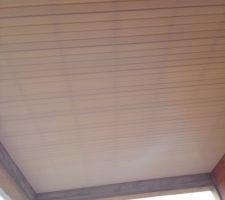 Plafond de la terrasse.