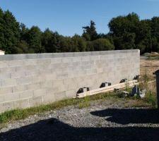 Mur d 1m80