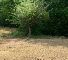 Préparation du terrain pour semerle gazon