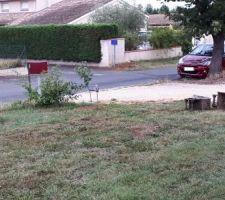 Terrain avant travaux : on voit les arbustes à déplacer