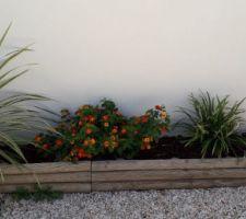 Un peu de plantes devant la maison à droite !
