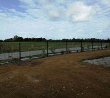 Engazonnement et plantation des haies terminés
