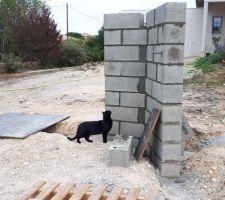 Noa inspecté le travail du maçon