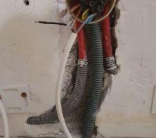 Gainage câble plinthe (au milieu)