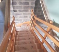Escalier Sous-sol