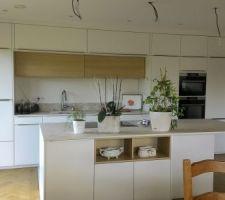 Nouvelles photos de la cuisine avec un peu de verdure.