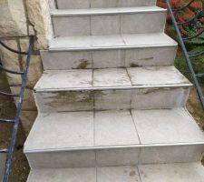 Carrelage recolle