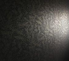Papier peint des WC n°2