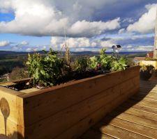 Terrasse mélèze 45mm et jardinières intégrées même essence