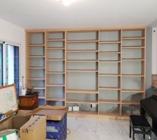 Bibliothèque sur mesure du salon