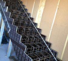 Installation des ferrailles dans le coffrage