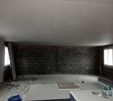 Début de Pose des polyplac sur les murs. Pose du placo pour le plafond