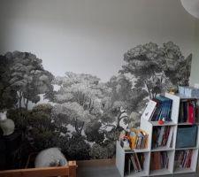 Chambre enfant... papier peint (intissé)