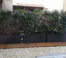 Travaux sur le toit terrasse : sécurisation et mise en place de dalles pour faciliter l'entretien de la haie brise-vue...