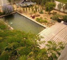 Vu de la terrasse sur la piscine eau naturel