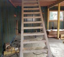 Escalier temporaire pour permettre à l'équipe de Placéo de monter leur machine (hélicoptère) en sécurité à l'étage et avec les seaux de béton qui restaient dans le camion pompe...