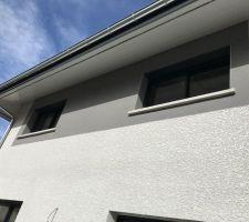 Crépis fenêtre du haut