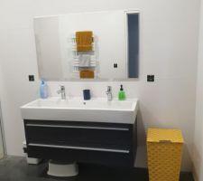 Salle d'eau des filles, meuble double avec grande vasque (Richardson)