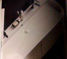 Idée double vasque salle d'eau suite parentale