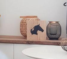 DIY peinture sur bois, pottock! On s occupe comme on peut :)
