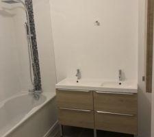 Pose de la baignoire, de la faïence, de la colonne de douche, de la double vasque et de la robinetterie.
