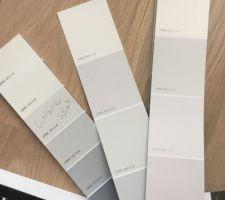 Choix des couleurs cuisine