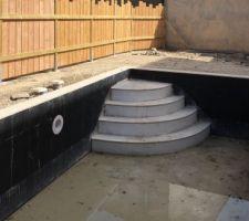 Clôture / piscine et local technique